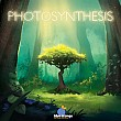 Photosynthesis  / Photosynthese